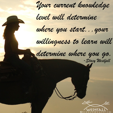Your current knowledge level will determine where you start...your willingness to learn will determine where you go.-Stacy Westfall